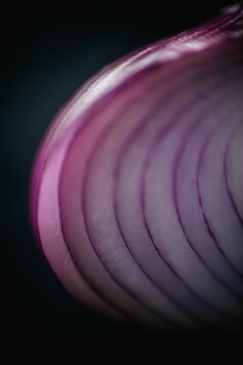 onion_blog-2