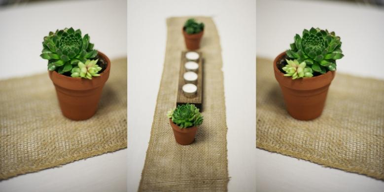 Cactus Wedding Decor